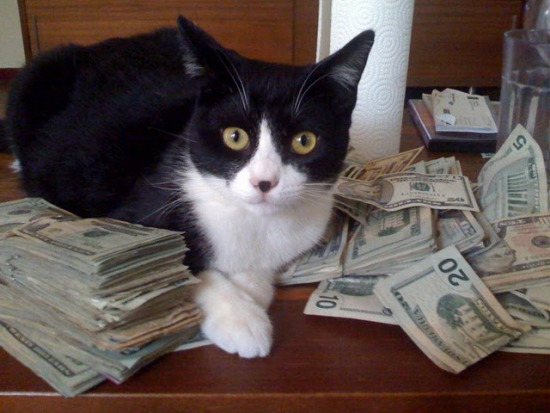 The Guardian Cub isn't the only cat making money.